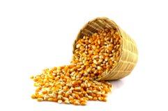 O milho em uma cesta do bambu descasca o fundo branco Foto de Stock Royalty Free