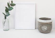 O modelo branco do quadro, ramo do eucalipto na garrafa de vidro, bacia do cimento, denominou a imagem limpa minimalista para o m Foto de Stock Royalty Free