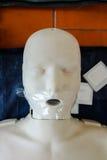 O modelo de treinamento da emergência é equipamento para treinar o CPR Imagens de Stock