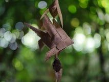 O modelo dos peixes feito da folha do coco Imagens de Stock Royalty Free