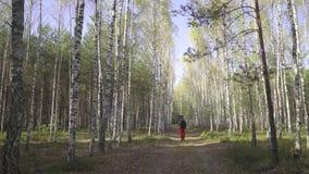 O moderno romântico do homem novo com caminhadas da guitarra na estrada no guitarrista da floresta do outono viaja no bosque do v filme