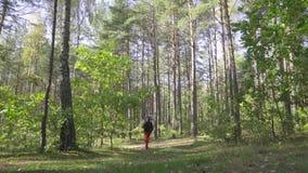 O moderno romântico do homem novo com caminhadas da guitarra na estrada no guitarrista da floresta do outono viaja no bosque do v vídeos de arquivo