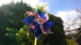 O moinho de vento da criança que gerencie no sol video estoque