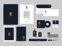 O molde da identidade corporativa para seu negócio inclui a tampa do CD, cartão, dobrador, régua, envelope e a cabeça da letra pr Imagem de Stock