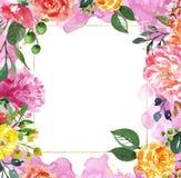 O molde floral do quadro do ouro da aquarela para convites do casamento, salvar os cartões de data, cumprimentos Rosa e peônias a ilustração do vetor