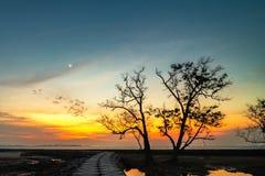 O momento do por do sol na ilha bintan fotos de stock