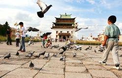 O monastério de Gandantegchinlen Khiid Fotos de Stock Royalty Free