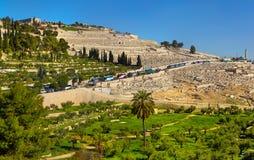 O Monte das Oliveiras, Jerusalém Foto de Stock Royalty Free