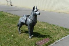 O monumento do cão de funcionamento em Volgograd Fotografia de Stock