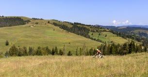 O motociclista abaixa a inclinação das montanhas Carpathian Imagens de Stock