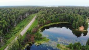 O movimento aéreo acima da lagoa azul perto da estrada secundária e os pássaros reunem-se voam sobre a lagoa, Rússia video estoque