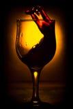 O movimento do vinho Foto de Stock