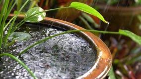O movimento lento a chuva caiu na lagoa A água está espirrando a água da lagoa de peixes é feita da argila filme