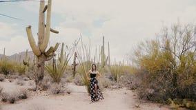 O movimento lento disparou largamente no levantamento bonito novo da mulher, olhando o deserto selvagem grande EUA do parque naci video estoque