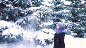 O movimento lento do inverno, neve cai lentamente de uma árvore, ramos de árvore dos toques da menina, quedas da neve video estoque