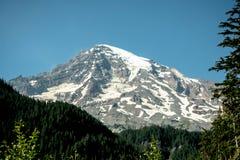 O Mt Ranier Imagem de Stock