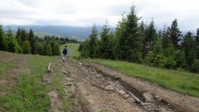 o Mulher-caminhante desce os agains verdes da inclinação um contexto das montanhas e do céu azul vídeos de arquivo