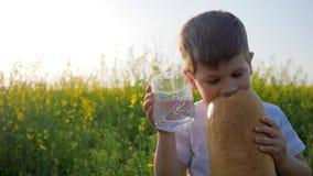O Mum dá o vidro da criança com agua potável, criança feliz com fome come o alimento no prado no luminoso, jovem com pão do naco video estoque