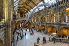 O museu da história natural em Londres foto de stock