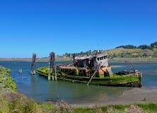 O musgo cobriu o barco Imagens de Stock