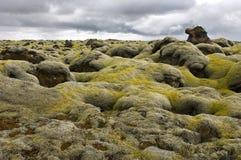 O musgo cobriu o campo de lava foto de stock
