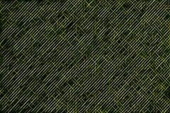 O néon verde abstrato listra a ilustração Textura colorida sem emenda Teste padrão do projeto para o fundo foto de stock