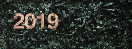 o número de madeira da textura do ano 2019 novo feliz no verde deixa o CCB da parede fotografia de stock