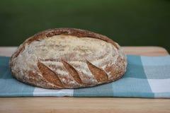 O naco do artesão de pão caseiro cozeu recentemente em uma placa de corte de madeira com fundo da grama verde Foto de Stock Royalty Free