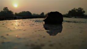 O nascer do sol bonito Imagem de Stock Royalty Free