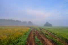 O nascer do sol enevoado em um prado em Rússia central Foto de Stock Royalty Free