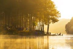 O nascer do sol na pungência-ung, pinho Forest Park para relaxa em Tailândia fotografia de stock