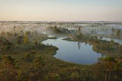 O nascer do sol no pântano Foto de Stock