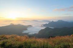 O nascer do sol sobre a névoa na montanha do phuchifa, chiangrai, Tailândia Imagens de Stock