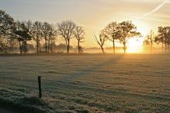 O nascer do sol sobre a neve cobriu a grama imagens de stock