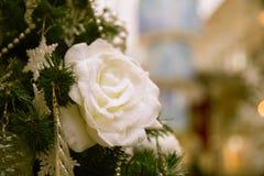 O Natal aumentou Fotos de Stock