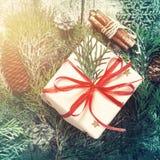 O Natal decorou o presente, ramos coníferos e canela Foto de Stock Royalty Free