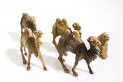 O Natal objeta, camelos plásticos dos animais para o diorama da natividade mim imagem de stock