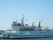 O navio branco no porto está pronto para navegar em um dia ensolarado fotos de stock royalty free