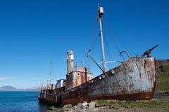 O navio de baleação velho saiu em Grytviken em Geórgia sul Imagens de Stock