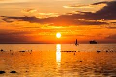 O navio de navigação yachts no mar perto do litoral de Tallinn Imagem de Stock Royalty Free