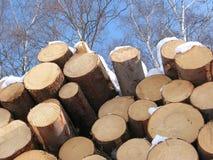 O negócio da madeira serrada Fotos de Stock Royalty Free