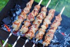 O no espeto, carne roasted, carne dos espetos, assado, carne da grade Imagens de Stock Royalty Free