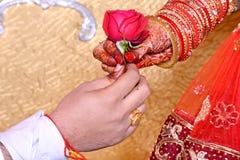 O noivo dá a flor para a noiva fotografia de stock