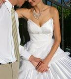 O noivo e a noiva fotografia de stock