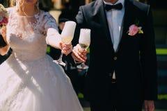 O noivo e a noiva que guardam um vidro do champanhe em sua mão foto de stock royalty free