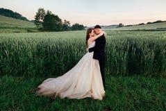 O noivo encontra-se suas mãos no bride& delicado x27; cintura de s imagens de stock