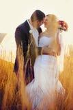 O noivo guarda a cintura da noiva quando rir no campo imagens de stock royalty free