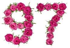 O numeral árabe 97, noventa e sete, das flores vermelhas de aumentou, isola Imagens de Stock