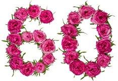O numeral árabe 60, sessenta, das flores vermelhas de aumentou, isolado sobre Fotos de Stock