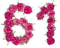 O numeral árabe 61, sessenta uns, das flores vermelhas de aumentou, isolado Fotografia de Stock